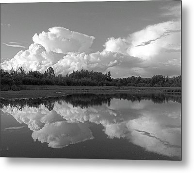 Reflecting Clouds Metal Print