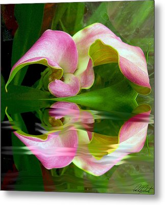 Reflecting Lily Metal Print