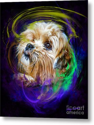 Metal Print featuring the digital art Reflecting On My Life by Kathy Tarochione