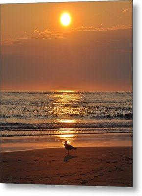 Reflecting On The New Day Metal Print by Bill Cannon
