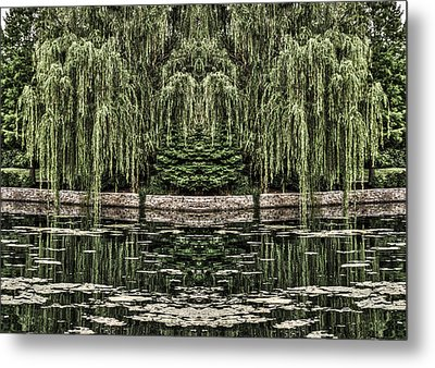 Reflecting Willows Metal Print by Rebecca Hiatt