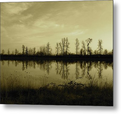 Reflection - Ankeny Wildlife Refuge Metal Print