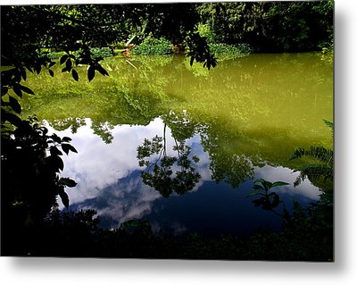 Reflection Metal Print by Arie Arik Chen