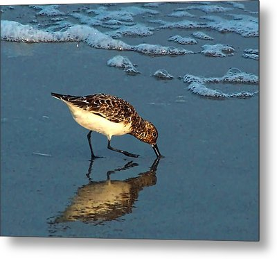 Reflection At Sunset Metal Print