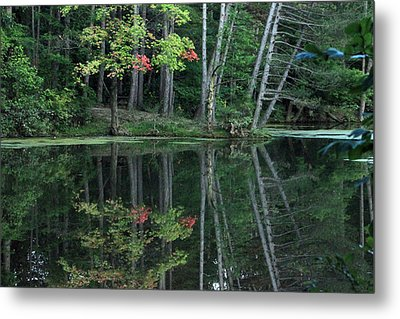 Metal Print featuring the photograph Reflection by Bruce Patrick Smith