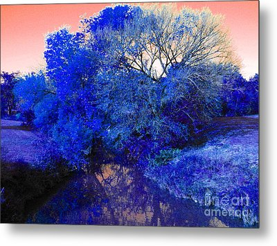 Reflection In Blue Metal Print