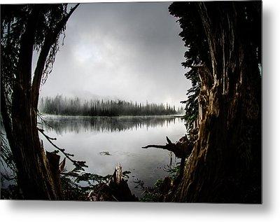 Reflection Lake Through The Stump Metal Print by Brian Xavier