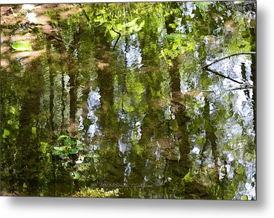 Reflection Of Woods Metal Print by Sonali Gangane
