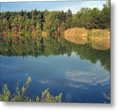 Metal Print featuring the photograph Reflection by Teresa Schomig