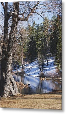 Reflection...in The Water Metal Print by Ivete Basso Photography
