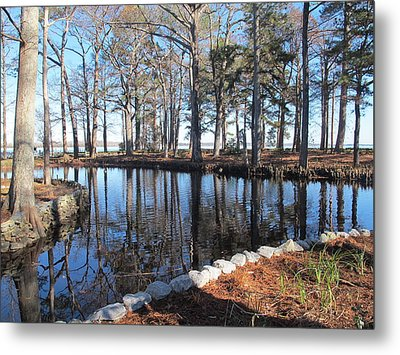 Reflections And Shadows Metal Print by Valia Bradshaw