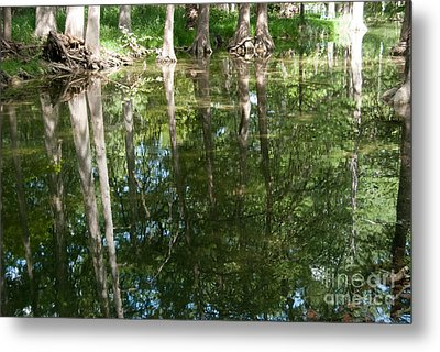 Reflections Metal Print by Barbara Shallue