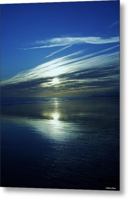 Reflections Metal Print by Barbara St Jean