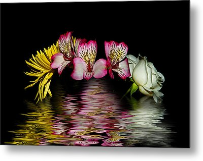 Metal Print featuring the photograph Reflections by Cecil Fuselier