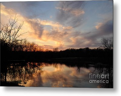 Metal Print featuring the photograph Reflections by Cheryl McClure