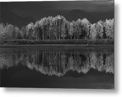 Reflections Metal Print by David Andersen