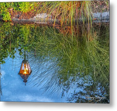 Reflections Metal Print by Dennis Dugan