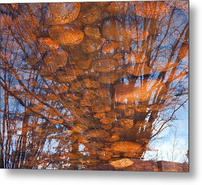 Reflections Metal Print by Eric Rundle