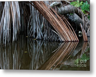 Reflections  Metal Print by Gary Bridger