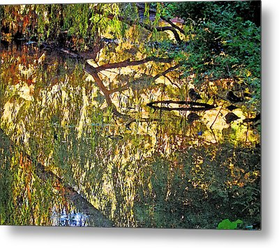 Reflections In Bayou Robert Metal Print