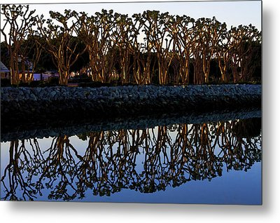 Metal Print featuring the photograph Reflections In First Light by Gary Holmes