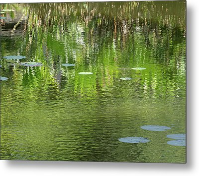 Reflections In Pond At Lunuganga Metal Print by Panoramic Images
