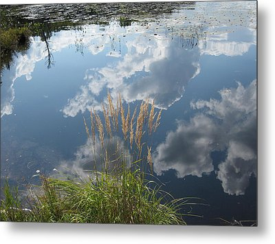Reflections In The Water Metal Print by Carolyn Reinhart