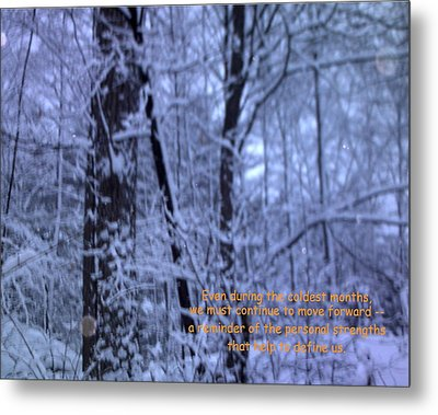 Reflections In Winter Metal Print by John Lavernoich