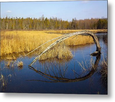 Reflections Metal Print by Jill Laudenslager