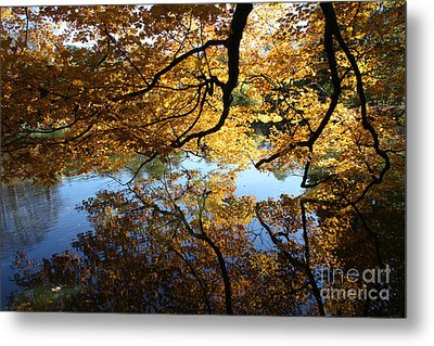Reflections Metal Print by John Telfer
