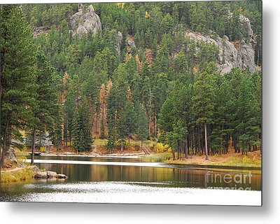 Reflections Metal Print by Mary Carol Story