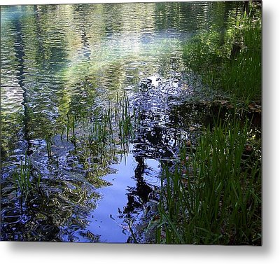 Metal Print featuring the photograph Reflections  by Mary Wolf