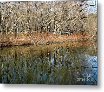 Metal Print featuring the photograph Reflections by Melissa Stoudt