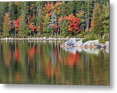 Reflections Metal Print by Mike Lang