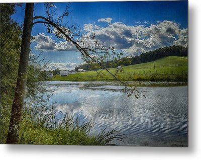Reflections Of A Beautiful Day Metal Print