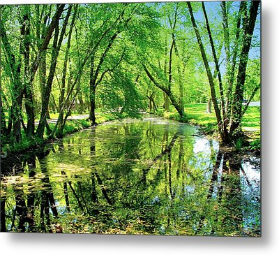 Reflections Of A Summer Day Metal Print by Rick Todaro