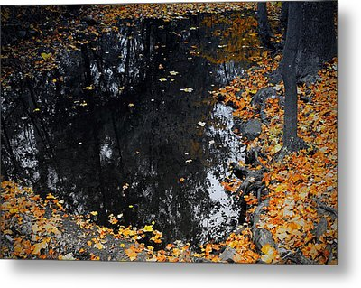 Reflections Of Autumn Metal Print by Photographic Arts And Design Studio