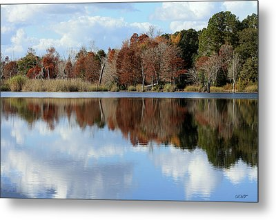 Reflections Of Color Metal Print by Debra Forand