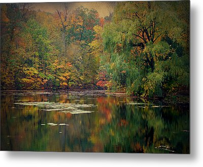 Reflections Of Fall Metal Print by Terry Eve Tanner