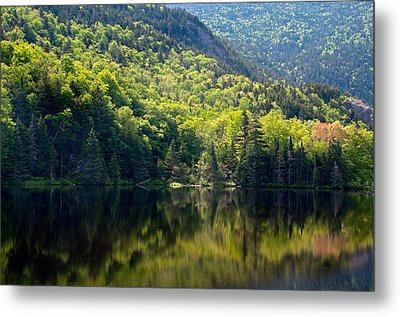 Reflections Of Majesty Metal Print