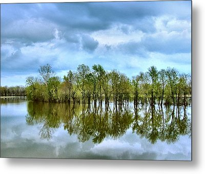 Reflections Of Spring Metal Print by Julie Dant