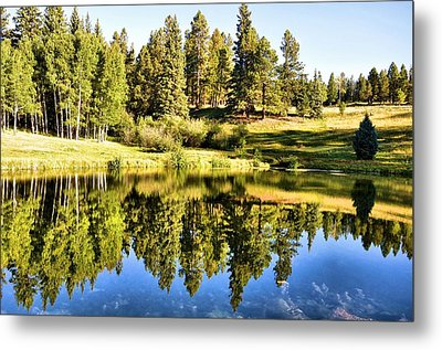 Reflections Of Summer Metal Print