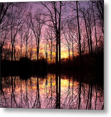 Reflections Of The Day Metal Print by Daphne Sampson
