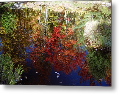 Metal Print featuring the photograph Reflections On Algonquin by David Porteus