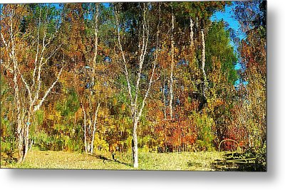 Metal Print featuring the photograph Reflections On Fall by Ludwig Keck