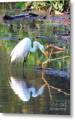 Reflections On Wildwood Lake Metal Print
