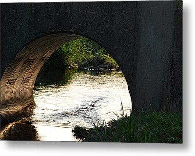 Metal Print featuring the photograph Reflections by Ramona Whiteaker