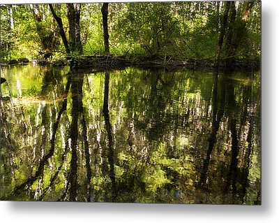 Reflections Two Metal Print