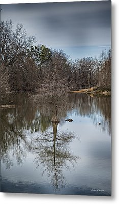 Metal Print featuring the photograph Reflections by Yvonne Emerson AKA RavenSoul