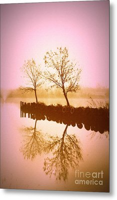 Metal Print featuring the photograph Reflective Glow by Julie Lueders